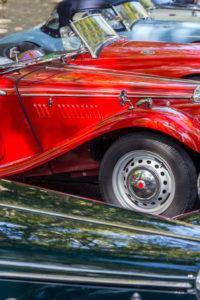 annual car festival